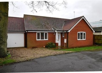Thumbnail 2 bedroom detached bungalow for sale in Morley Road, Tiptree, Colchester