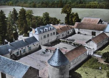 Thumbnail 6 bed property for sale in Chateauneuf Sur Loire, Centre, 45110, France