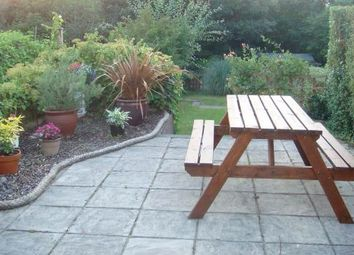 Thumbnail 2 bed cottage to rent in Ffordd Y Capel, Efail Isaf