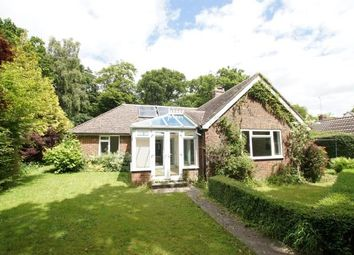 Thumbnail 4 bedroom bungalow for sale in Brightling Road, Robertsbridge, East Sussex