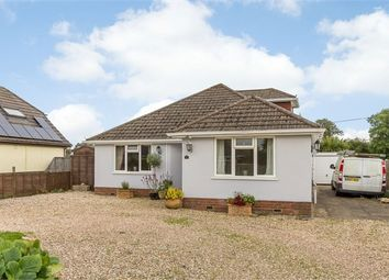 Thumbnail 4 bed detached bungalow for sale in Danehurst New Road, Tiptoe, Lymington, Hampshire