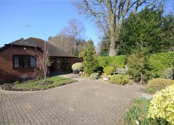 Thumbnail 2 bedroom detached bungalow for sale in Farriers Close, Woodley, Reading