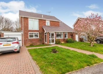 Thumbnail 4 bed bungalow for sale in Eastergate, Bexhill-On-Sea