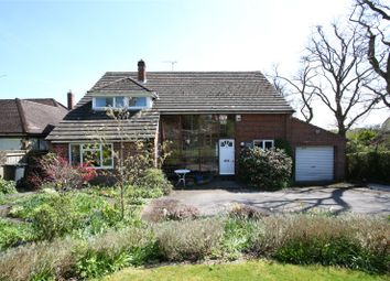 Thumbnail 4 bed detached house for sale in Echo Barn Lane, Wrecclesham, Farnham, Surrey
