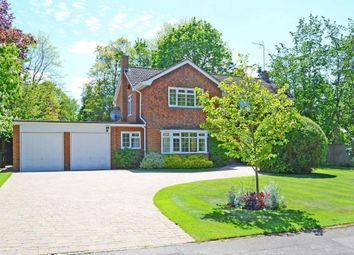 Thumbnail 5 bedroom detached house to rent in The Garth, Cobham