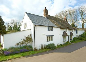 Thumbnail 3 bed cottage to rent in Sackville Street, Winterborne Kingston, Blandford Forum