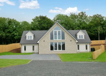 Thumbnail 5 bedroom detached house for sale in Bellefield Road, Lanark