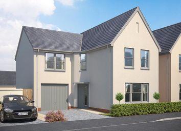 Thumbnail 4 bed detached house for sale in White Rock, Paignton, Devon
