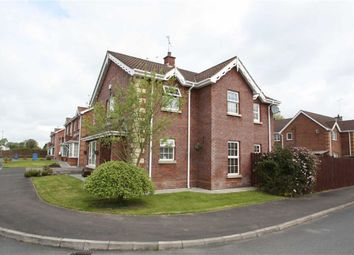 Thumbnail 4 bed detached house for sale in Lime Trees, Ballynahinch, Down