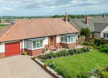 Thumbnail 3 bed detached bungalow for sale in 37 Blakelaw Road, Alnwick, Northumberland