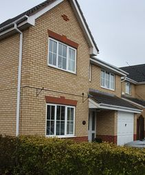 Thumbnail 4 bed detached house to rent in Kedleston Road, Peterborough