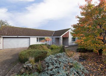 Thumbnail 4 bed bungalow for sale in Trinity Place, St Andrews, Fife
