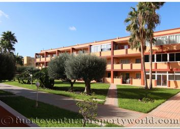 Thumbnail 2 bed apartment for sale in Parque Holandes, Fuerteventura, Canary Islands, Spain