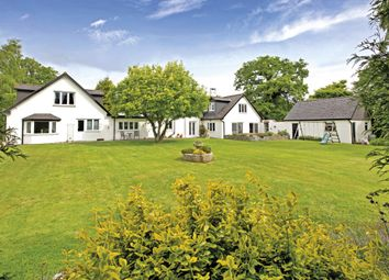 Thumbnail 4 bedroom semi-detached house for sale in Teigngrace, Newton Abbot