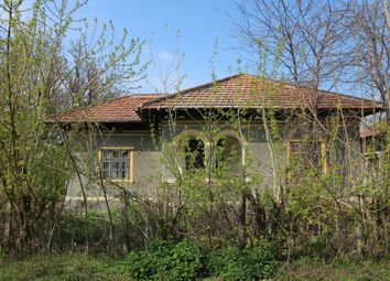 Thumbnail 3 bedroom detached house for sale in Silistra Region, Village Of Popina, 500m. To The River .Expats