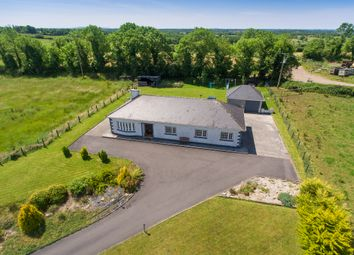 Thumbnail 4 bedroom bungalow for sale in Antfield, Carrick-On-Shannon, Leitrim