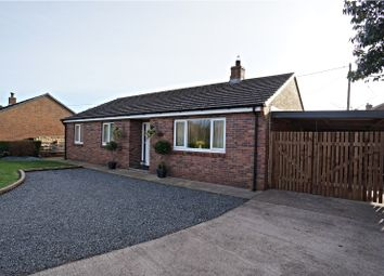 Thumbnail 3 bed detached bungalow for sale in Newton Arlosh, Wigton