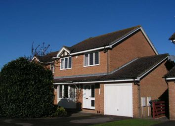 Thumbnail 4 bed detached house to rent in Osprey Close, Bicester