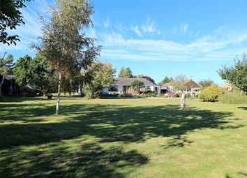 Thumbnail 3 bedroom bungalow for sale in The Street, Ramsey, Harwich