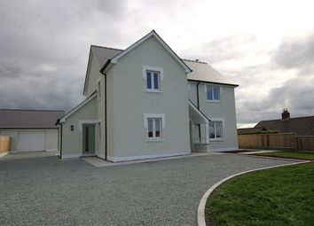 Thumbnail Detached house for sale in Adjacent To Brynbuga, Beulah, Newcastle Emlyn