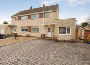 Thumbnail 4 bed semi-detached house for sale in Marshall Grove, Hamilton, South Lanarkshire