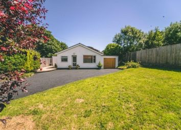 Thumbnail 2 bed detached bungalow for sale in High Street, St. Florence, Nr. Tenby