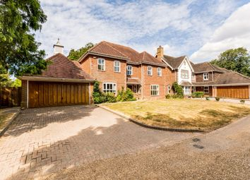 Thumbnail 5 bed detached house to rent in St. Andrews Lane, Tangmere, Chichester