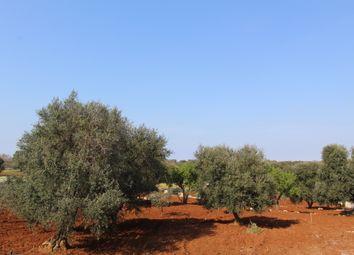 Thumbnail Land for sale in Contrada Maresca, Carovigno, Brindisi, Puglia, Italy