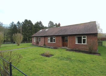 Thumbnail 3 bed detached bungalow to rent in The Drewton Estate, Drewton, South Cave