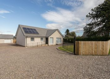 Thumbnail 4 bedroom detached bungalow for sale in 5B Thanes View, Dunsinnan Road, Wolfhill, Perthshire