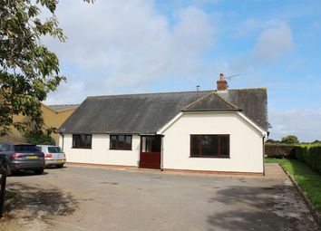 Thumbnail 4 bed detached bungalow to rent in Triangle Farm, Churchstanton, Taunton