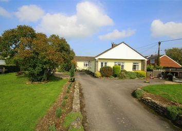 Thumbnail 4 bed detached house for sale in Calne, Wiltshire
