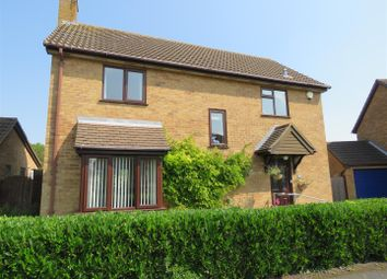 Thumbnail 4 bedroom detached house for sale in Newton Road, Sawtry, Huntingdon