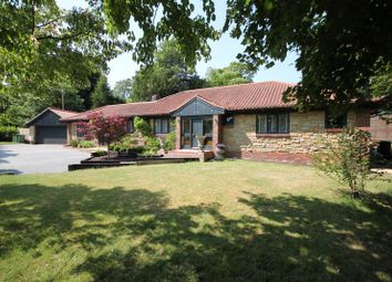 Threals Lane, West Chiltington, Pulborough RH20. 6 bed detached bungalow