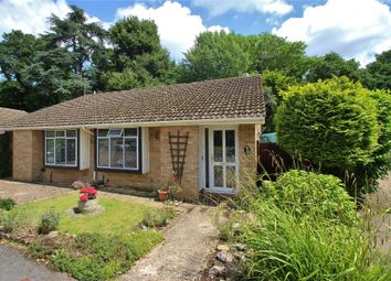 Thumbnail 2 bedroom semi-detached bungalow for sale in Horsell, Surrey