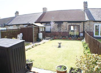 Thumbnail 3 bed bungalow for sale in Witton Street, Consett