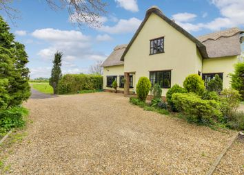Thumbnail 4 bedroom cottage for sale in Ely Road, Witchford, Ely