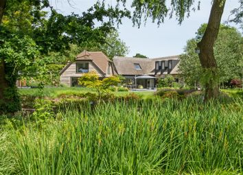 Thumbnail 4 bedroom property for sale in Park Lane, Aldingbourne, Chichester