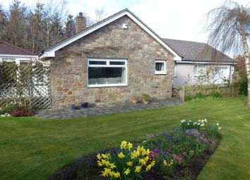 Thumbnail 3 bed detached bungalow for sale in Warenford, Belford, Northumberland