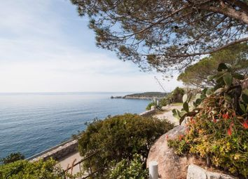 Thumbnail 6 bed town house for sale in 57034 Campo Nell'elba LI, Italy