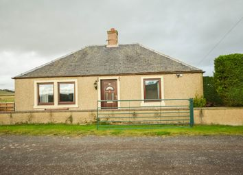 Thumbnail 2 bed bungalow to rent in Birkenbush, Forfar, Angus