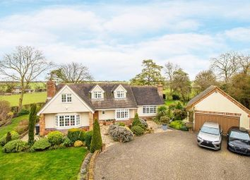 Thumbnail 4 bedroom detached house for sale in Great Hormead, Buntingford
