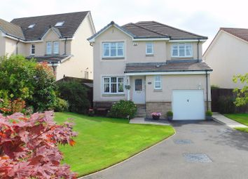Thumbnail 4 bed detached house for sale in Peasehill Brae, Rosyth