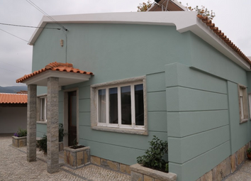 Thumbnail Detached house for sale in Mucifal, Colares, Lisbon, Portugal