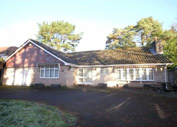 Thumbnail 3 bed detached bungalow for sale in Orchard Close, Ferndown