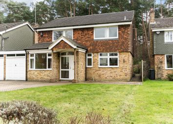 Thumbnail 4 bedroom detached house to rent in Heathpark Drive, Windlesham, Surrey
