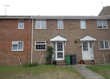 Thumbnail 3 bed terraced house to rent in Bexhill Road, St. Leonards-On-Sea