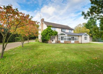 Thumbnail 4 bed detached house for sale in Mole Hill Green, Felsted, Dunmow