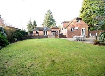 Thumbnail 5 bed detached house for sale in Lime Avenue, Camberley, Surrey