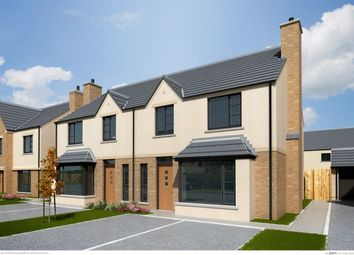 Thumbnail 3 bed semi-detached house for sale in The Baneberry, Ferrard Meadow, Antrim